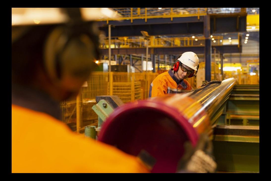 Export Lines PLP